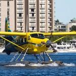 Downtown-Vancouver-Seaplane-Terminal-Taxis-150x150