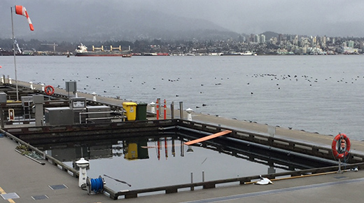 Vancouver Harbour Flight Centre_Duck Ramp Story 2